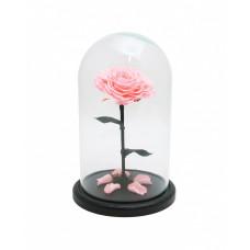 Стабилизированная роза в колбе (розовая)