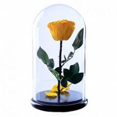 Стабилизированная роза в колбе (желтая)